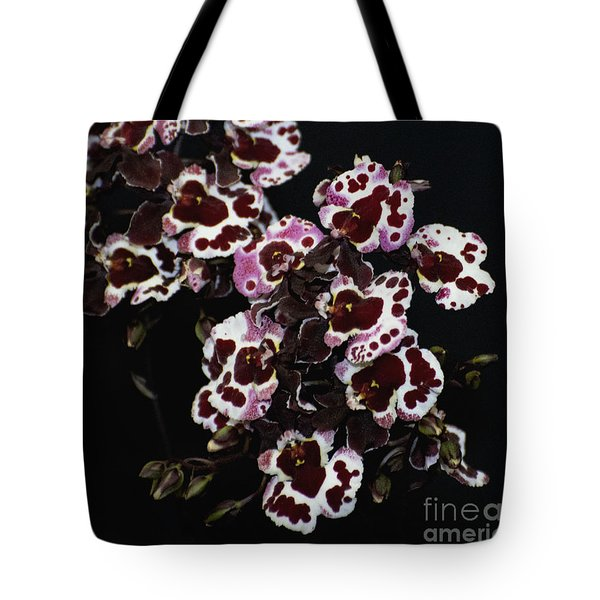 Tolumnia Jairak Rainbow  'freckle Face'   4647  Tote Bag by Terri Winkler