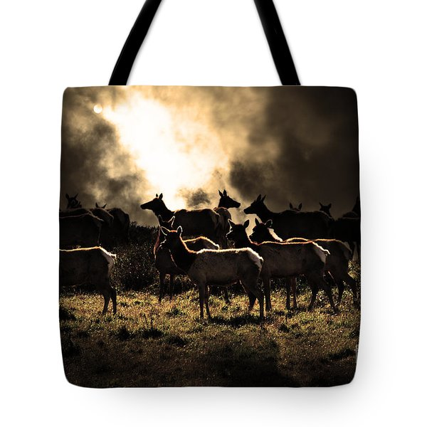 Tomales Bay Harem Under The Midnight Moon - 7d21241 - Sepia Tote Bag by Wingsdomain Art and Photography
