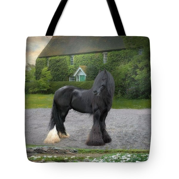 Tonka Tote Bag by Fran J Scott