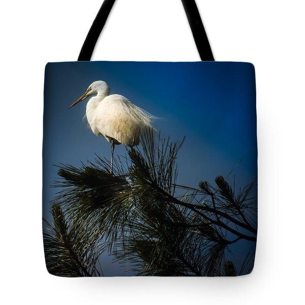 On Top Of The World Tote Bag by Karen Wiles