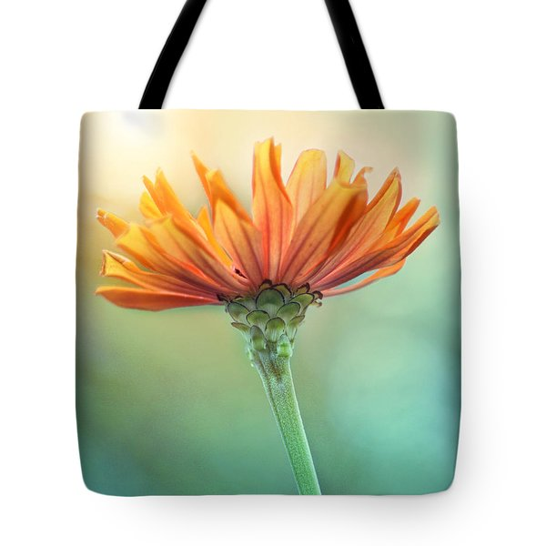 Torch Song Tote Bag by Amy Tyler