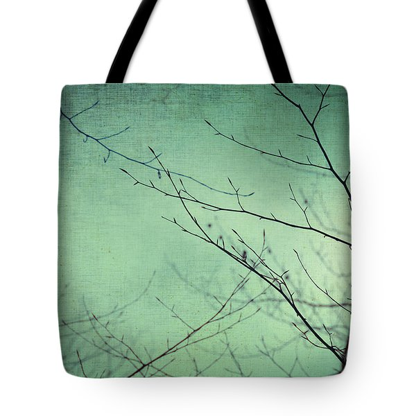 Touching The Sky Tote Bag by Taylan Soyturk