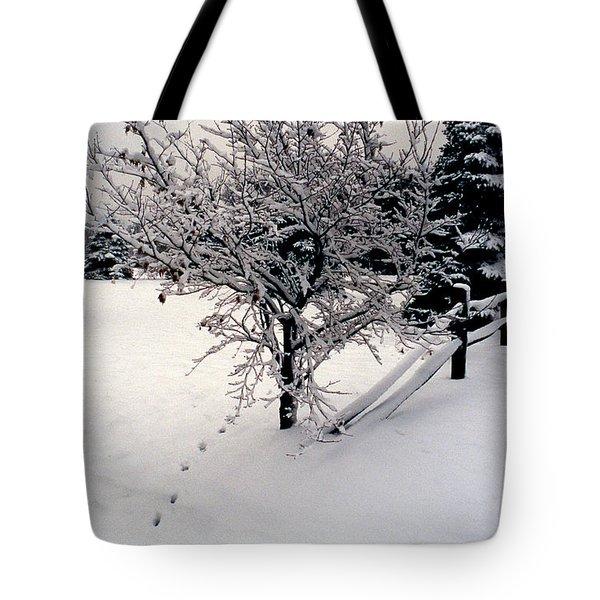 TRACKS Tote Bag by Skip Willits