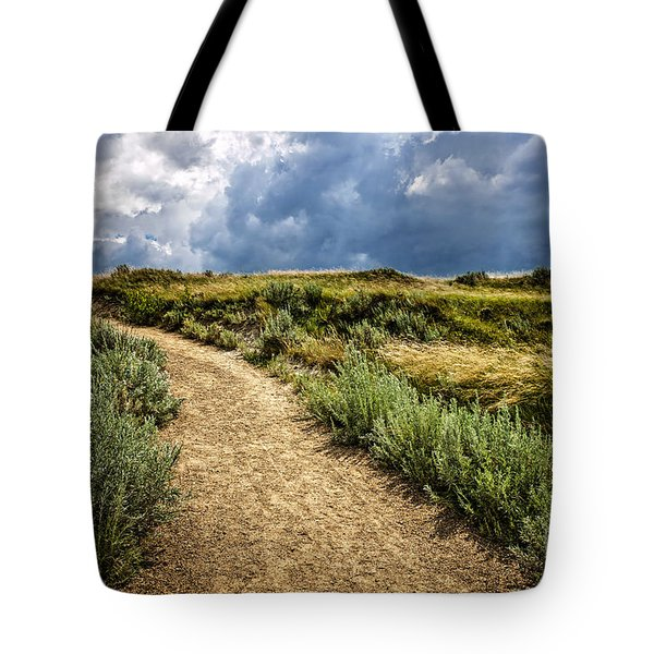 Trail In Badlands In Alberta Canada Tote Bag by Elena Elisseeva