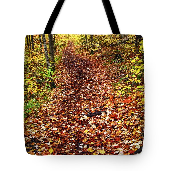 Trail In Fall Forest Tote Bag by Elena Elisseeva