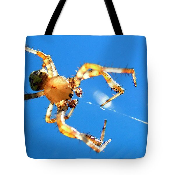 Trapeze Spider Tote Bag by Christina Rollo