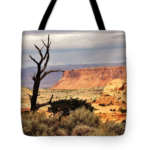Tree And Mesa Tote Bag by Marty Koch