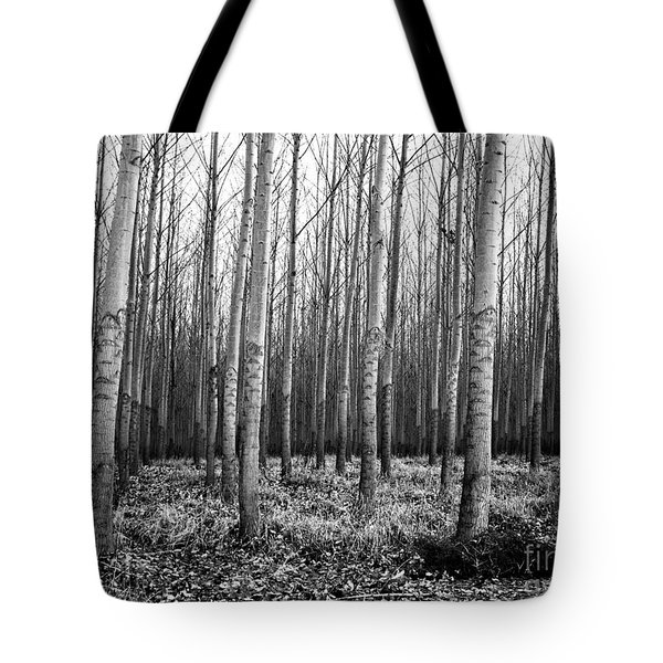 Tree Farm Tote Bag by Chalet Roome-Rigdon