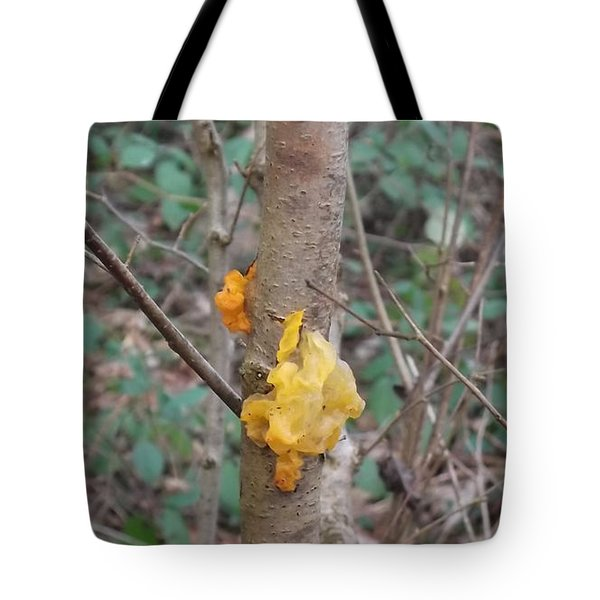 Tree Fungus Tote Bag by John Williams
