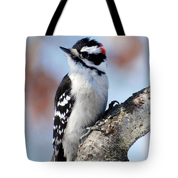 Tree Huggin' Nut Lover Tote Bag by Christina Rollo