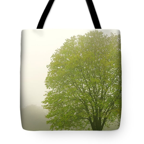 Tree In Fog Tote Bag by Elena Elisseeva