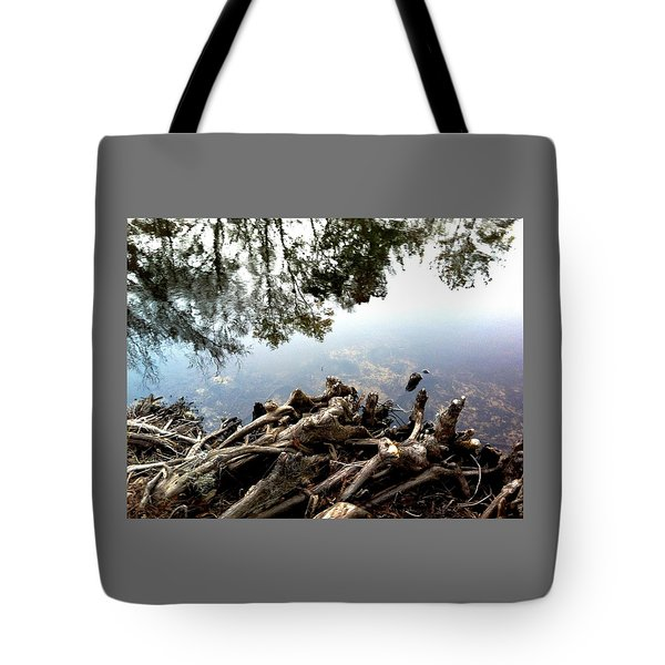 Tree Reflections Tote Bag by Robin Lewis