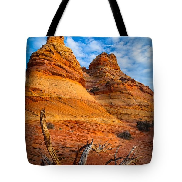Tree Remnants Tote Bag by Inge Johnsson