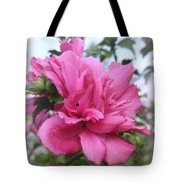 Tree Rose Of Sharon Tote Bag by Kay Novy