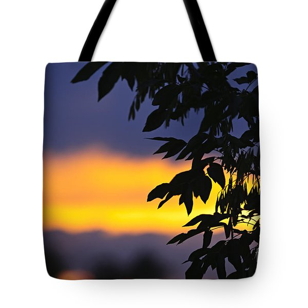 Tree silhouette over sunset Tote Bag by Elena Elisseeva
