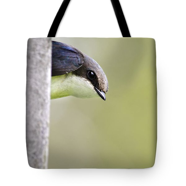 Tree Swallow Closeup Tote Bag by Christina Rollo