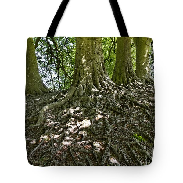 Trees And Roots Wiltshire England Tote Bag by Robert Preston