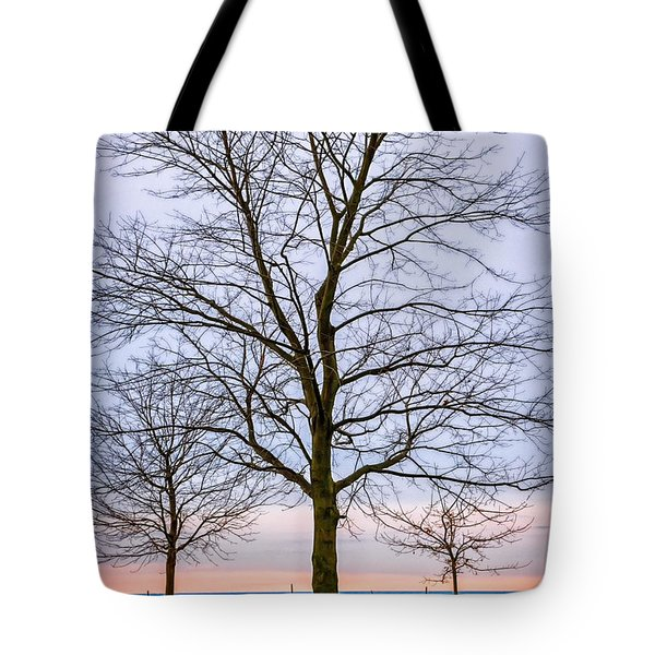 Trees at the Boardwalk in Toronto Tote Bag by Elena Elisseeva