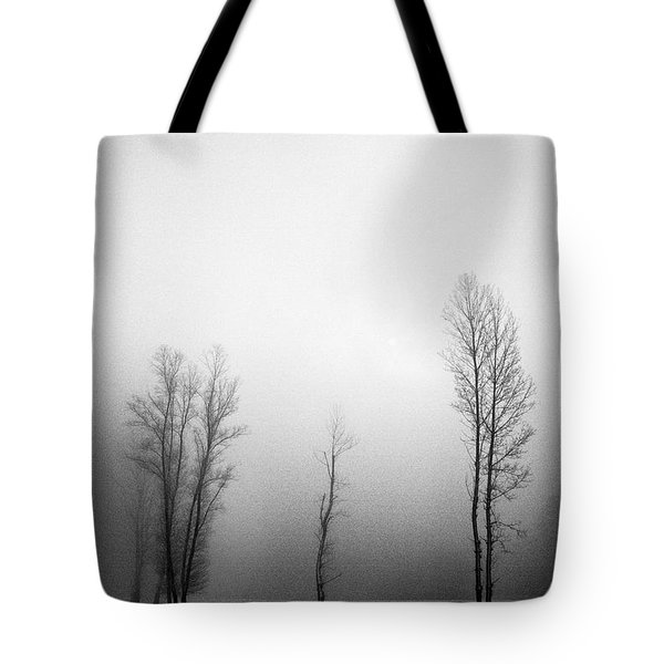 Trees In Mist Tote Bag by Davorin Mance