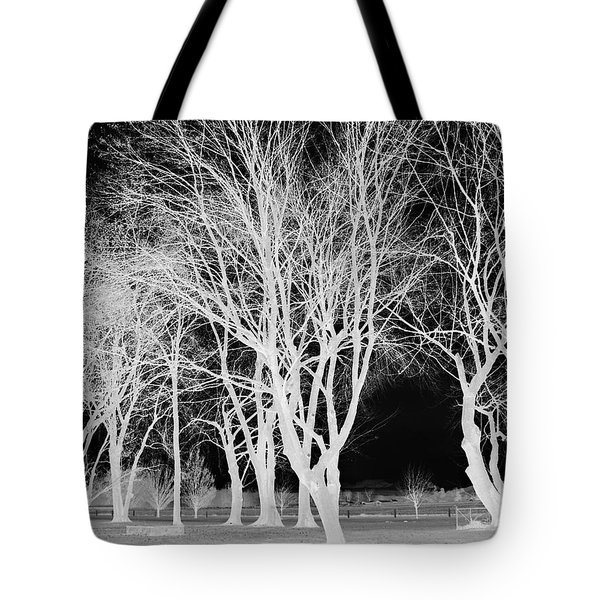 Trees In Park 2 Tote Bag by Chalet Roome-Rigdon