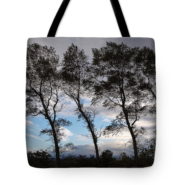 Trees Tote Bag by Louise Heusinkveld