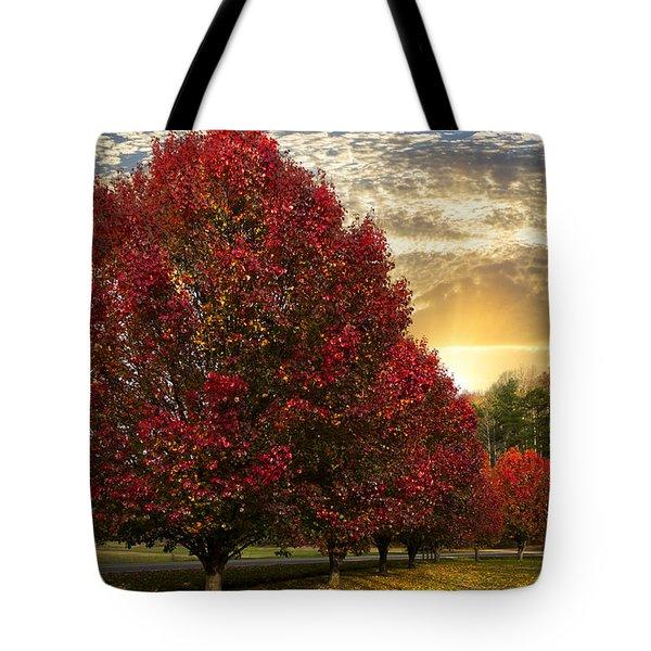Trees On Fire Tote Bag by Debra and Dave Vanderlaan