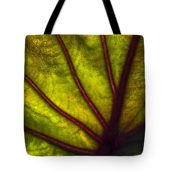 Tributaries Tote Bag by Debra and Dave Vanderlaan
