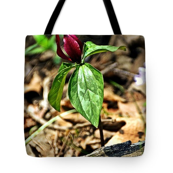 Trillium Deluxe Tote Bag by Marty Koch