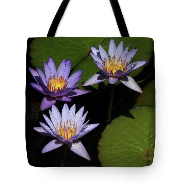 Trio Of Purple Water Lilies Tote Bag by Sabrina L Ryan