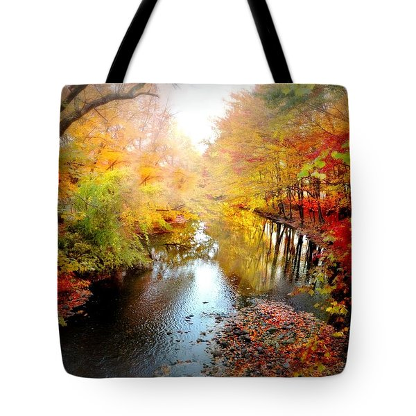 Trip Through My Mind Tote Bag by Diana Angstadt