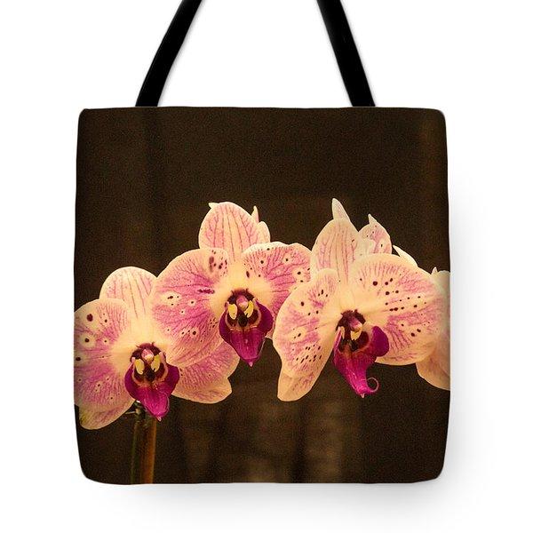 Triple Orchid Arrangement 1 Tote Bag by Douglas Barnett