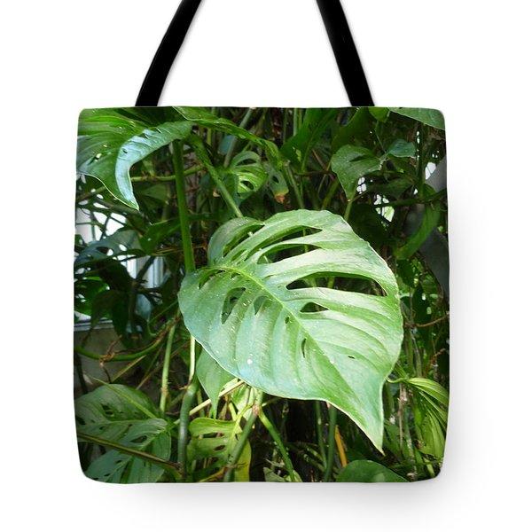 Tropical Green Foliage Tote Bag by Lingfai Leung