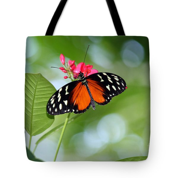 Tropical Hecale Butterfly Tote Bag by Karen Adams