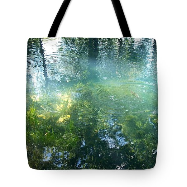 Trout Pond Tote Bag by Mary Wolf