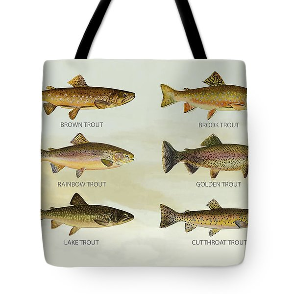 Trout Species Tote Bag by Aged Pixel