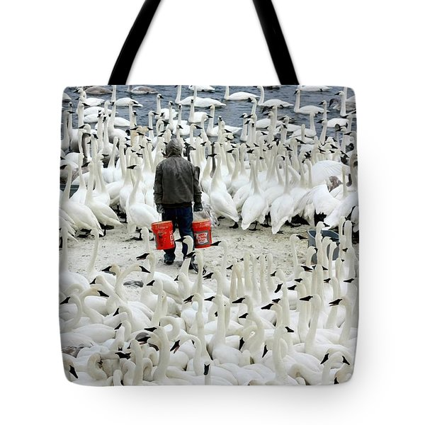 Trumpeter Swan Feeding Time Tote Bag by Amanda Stadther