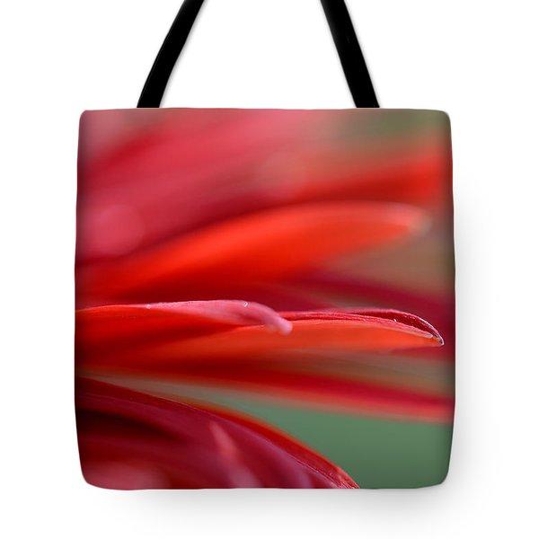 Trying To Believe Tote Bag by Melanie Moraga