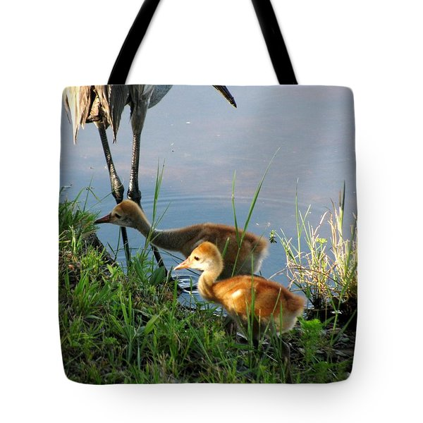 Trying To Catch... Tote Bag by Zina Stromberg