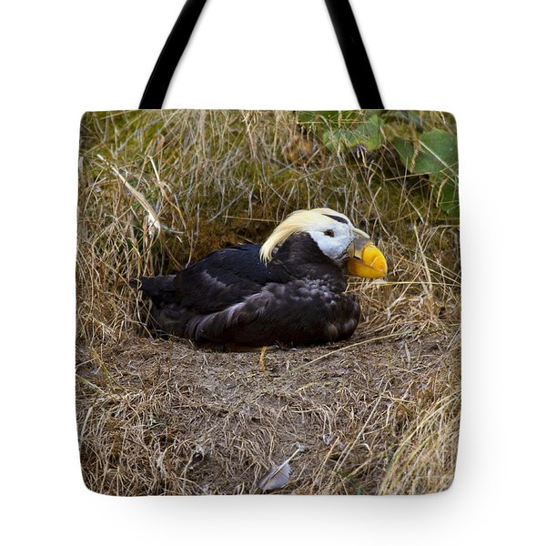 Tufted Puffin Tote Bag by Mike  Dawson