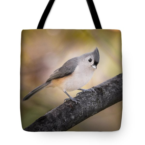 Tufted Titmouse Tote Bag by Bill Wakeley
