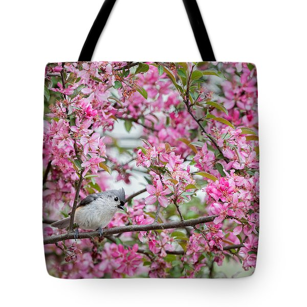 Tufted Titmouse In A Pear Tree Tote Bag by Bill Wakeley