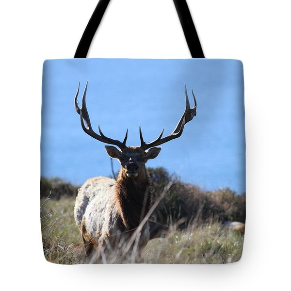 Tules Elks of Tomales Bay California - 7D21201 Tote Bag by Wingsdomain Art and Photography
