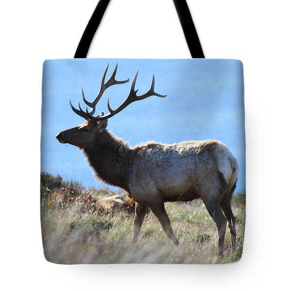 Tules Elks of Tomales Bay California - 7D21218 Tote Bag by Wingsdomain Art and Photography