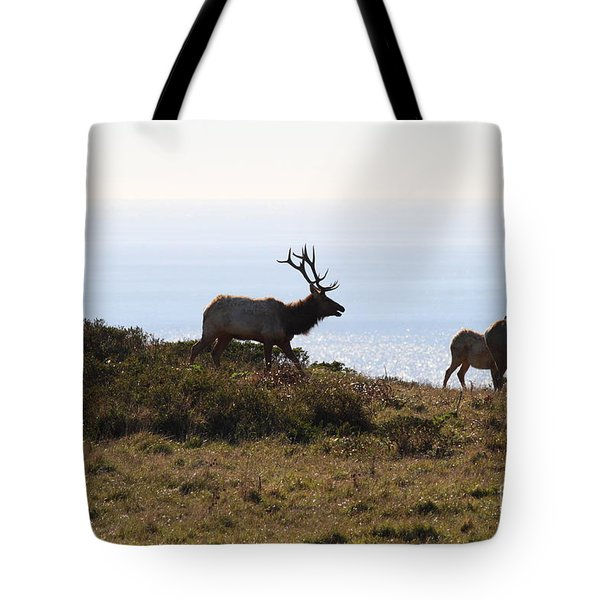 Tules Elks of Tomales Bay California - 7D21230 Tote Bag by Wingsdomain Art and Photography