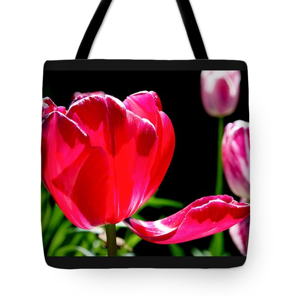 Tulip Extended Tote Bag by Rona Black