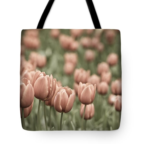 Tulip Field Tote Bag by Frank Tschakert