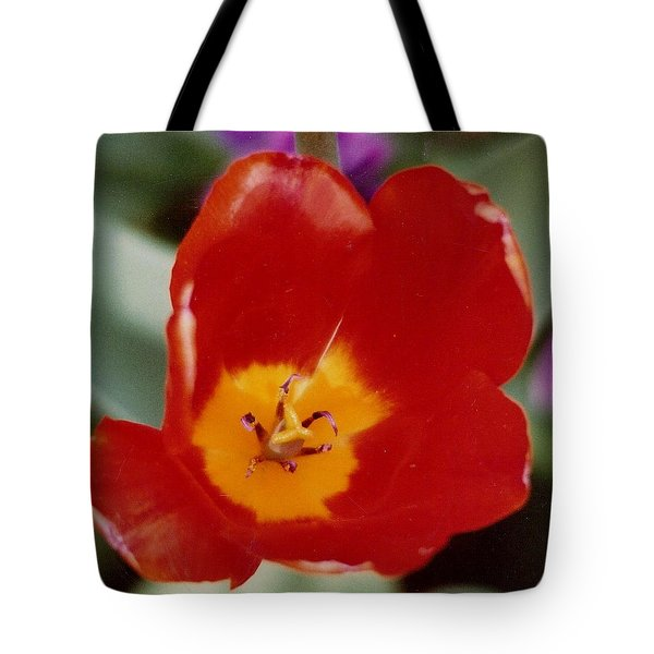 Tulip In Holland Tote Bag by M and L Creations