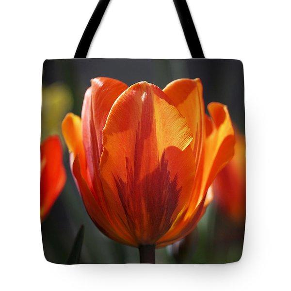 Tulip Prinses Irene Tote Bag by Rona Black