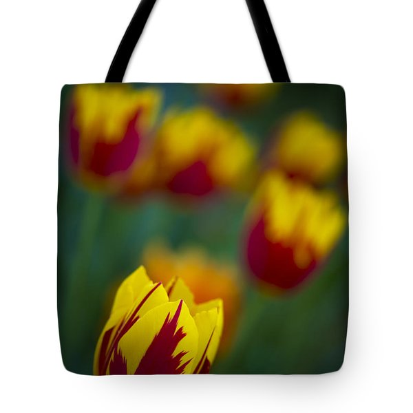 Tulips Tote Bag by Chevy Fleet