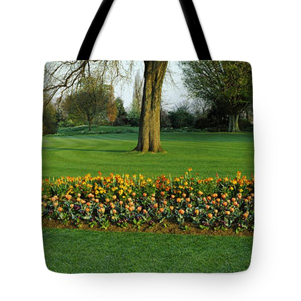 Tulips In Hyde Park, City Tote Bag by Panoramic Images